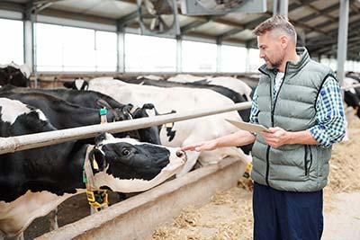 Rolnicy - kredyty preferencyjne